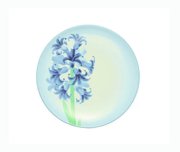 Noritake Colorwave Turquoise Floral Accent Plate Plum
